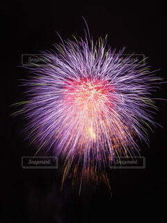 空いっぱいの花火の写真・画像素材[4693737]
