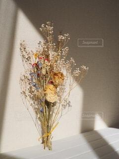 窓際の花の写真・画像素材[4694081]