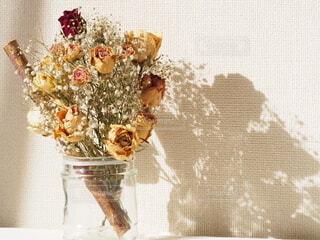 窓際の花の写真・画像素材[4694087]