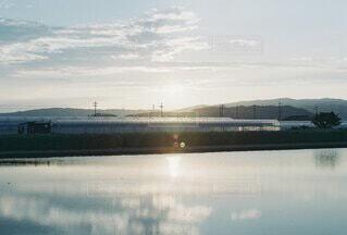 夕陽と水の張った田んぼのリフレクションの写真・画像素材[4896508]