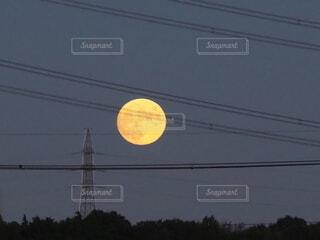 自然,風景,空,月,オレンジ色,大きい月,月の模様,月の出したばかり,満月間近の月,鉄塔とお月さま