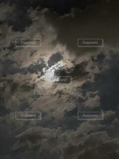 月夜の写真・画像素材[4837957]