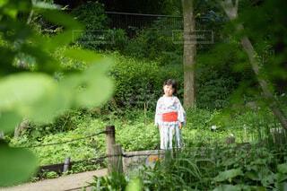庭に立つの写真・画像素材[4708044]