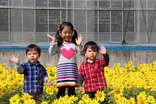 黄色の花の前で立っている女の子の写真・画像素材[899793]