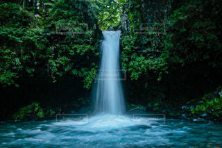 陣馬の滝の写真・画像素材[4714662]