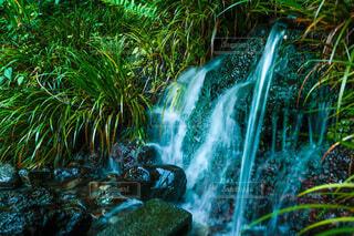 陣馬の滝の写真・画像素材[4714663]