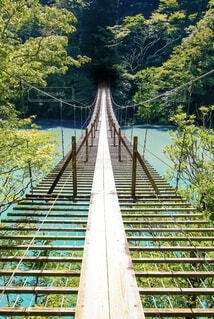 夢の吊り橋の写真・画像素材[4763794]