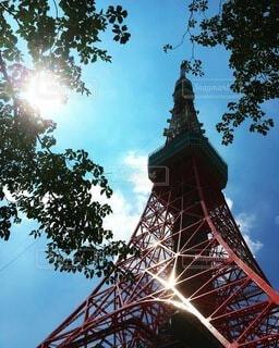 真夏の東京タワーの写真・画像素材[4727685]