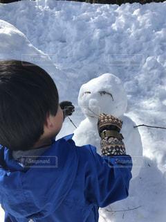 雪の写真・画像素材[373572]