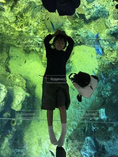 水中を泳ぐ女性の写真・画像素材[956092]