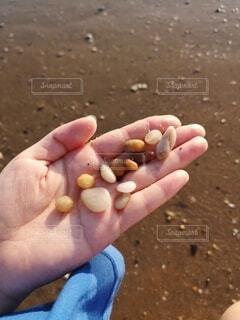 砂浜で拾った石の写真・画像素材[4747497]