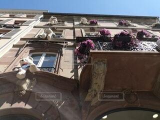 ホテルの窓にたくさんいるクマの写真・画像素材[4763418]