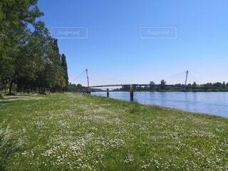 川沿いの公園の写真・画像素材[4768486]