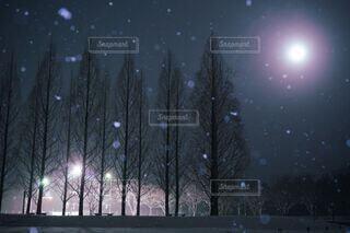 冬の夜空の写真・画像素材[4758835]