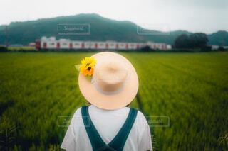里帰りの写真・画像素材[4726547]