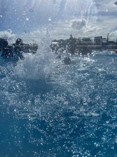 上がる水しぶきの写真・画像素材[4746859]