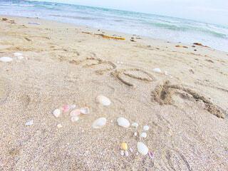 夏の海の写真・画像素材[4733827]