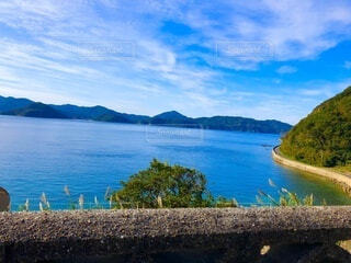 海沿いの道の写真・画像素材[4738419]