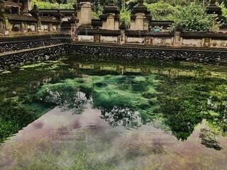 聖なる泉 〜ティルタウンプル〜の写真・画像素材[4746345]