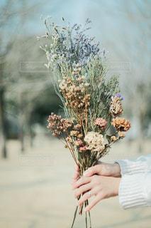 植物を持っている人の写真・画像素材[951700]