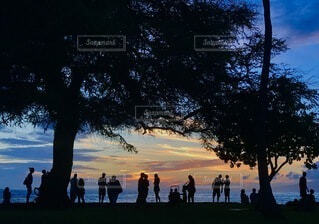 夕暮れのシルエットの写真・画像素材[4750328]