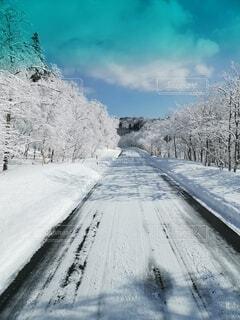 雪に覆われた幻想的な道の写真・画像素材[4751041]