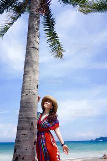 浜辺のヤシの木の隣に立っている人の写真・画像素材[2355397]