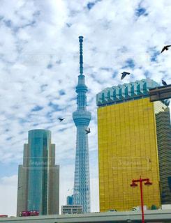 東京 - No.485546