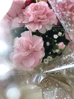 花のクローズアップの写真・画像素材[2116294]