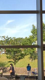 自転車,後ろ姿,散歩,小学生,中年,晴れた日,絵画のよう,窓から見た風景,道行く人