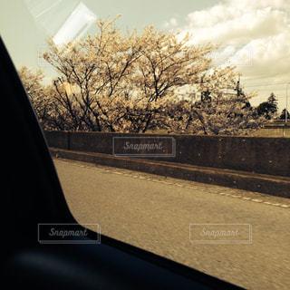 セピア色,車窓,フィルム,旅立ち,新天地,フィルム写真,フィルムフォト