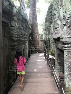 世界遺産,カンボジア,アンコールワット遺跡,タ プローム,トゥームレイダー撮影場所