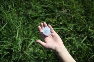 芝生の上でろうそくを持つ手の写真・画像素材[4760657]