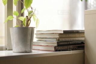 窓辺に本とグリーンの写真・画像素材[4760784]