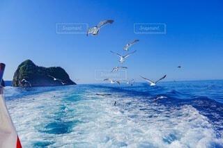 積丹の船からの風景の写真・画像素材[4760669]