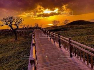 知床の夕陽の写真・画像素材[4827376]