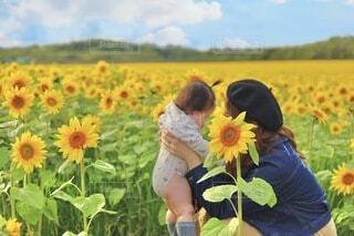 秋に咲く向日葵とママと娘の写真・画像素材[4857457]