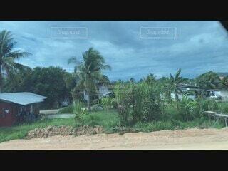 マレーシア散策の写真・画像素材[4816237]
