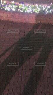 ハウステンボスの前での写真・画像素材[4818729]