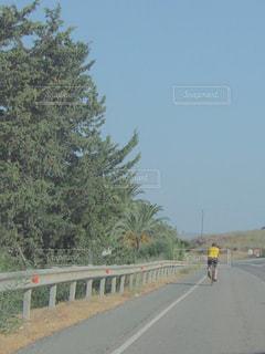 自然,アウトドア,空,自転車,木,緑,ヨーロッパ,山,サイクリング