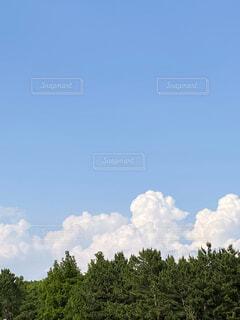 雲の写真・画像素材[4855946]