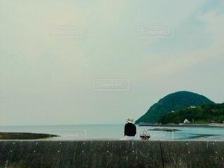 堤防に座って海を眺める女性の写真・画像素材[4800771]