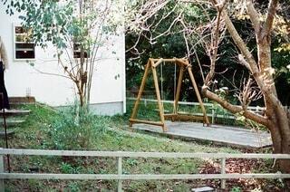 屋外,樹木,film,フィルム,遊び場,草木