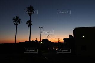 ヤシの木と夕焼けの写真・画像素材[4835122]