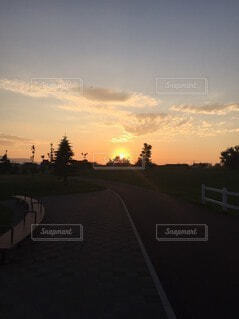 風景,空,屋外,太陽,雲,夕暮れ,道路,樹木,道