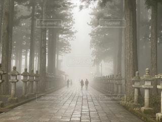 幻想的な風景の写真・画像素材[4763701]