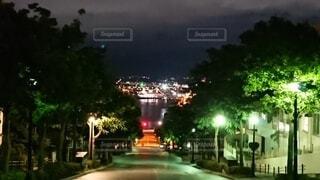 八幡坂の夜景の写真・画像素材[4766207]