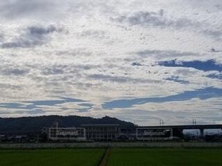 空,屋外,雲,草