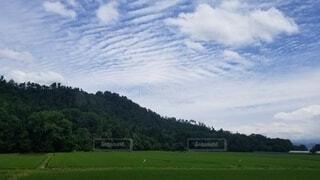 自然,風景,空,屋外,緑,雲,山,景色,草,樹木