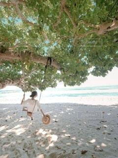 砂浜のブランコにての写真・画像素材[4773318]